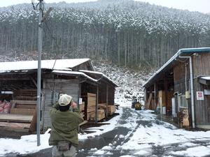 兵庫県産材のサムネール画像